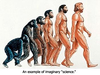 Monkeys to Men