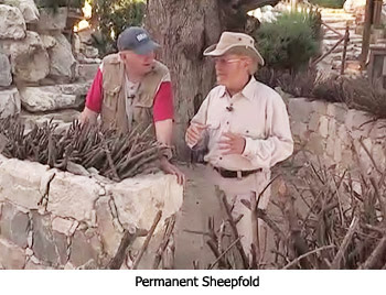Permanent Sheepfold