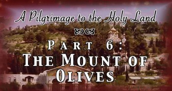 The Mount of Olives - Pilgrimage 6