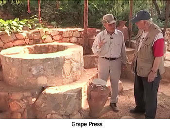 Grape Press