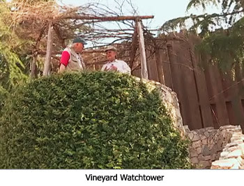 Vineyard Watchtower