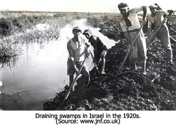 Draining Swamps