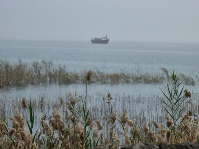 Galilee Boats