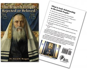 The Jewish People Book